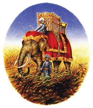 elephant awk